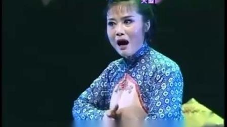 黄梅戏-红杜鹃选段七.mp4