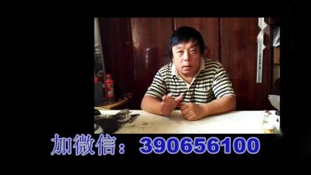 中老年每周快乐学国画系列:19希望小学(中).mp4