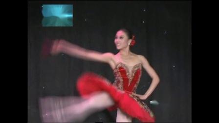 第六届CCTV电视舞蹈少儿舞蹈表演舞蹈比赛系列之堂吉诃德