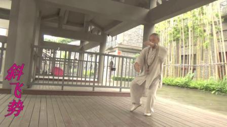 杨式太极拳85式