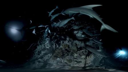 怒海狂鲨(精华版)