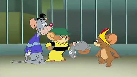 猫和老鼠:到底是谁这么聪明?竟然能将杰瑞给套路了