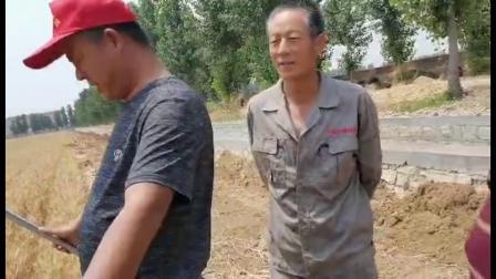 耕田乐小麦测产