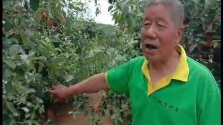 耕田乐山东10 2020年6月5日栖霞市西城镇引领村