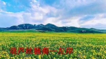 《花儿香》葫芦丝独奏—左岸