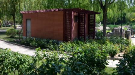 2020.6.8.我家的后花园.西柳公园