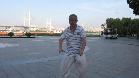 老人陈氏太极拳老架一路练习自拍视频拍摄者水平很差像机老歪着