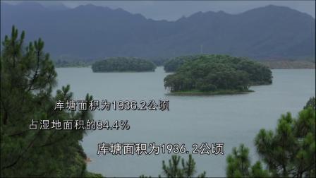 广东开平孔雀湖国家湿地公园宣传片
