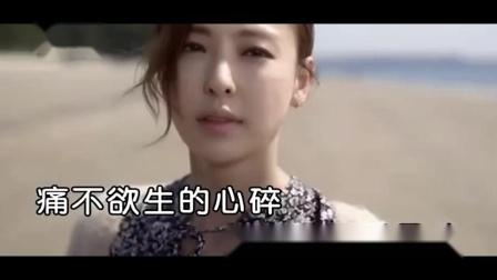 雨柔 - 心中永不凋落的玫瑰 - KTV版