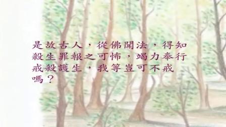 05-製板鴨的老叔公(配樂版)