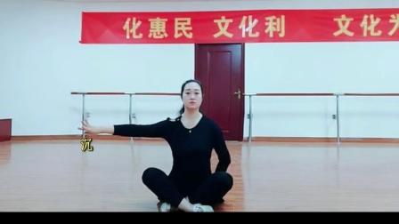 石家庄市群众艺术馆古典舞培训课程——提沉动作要领.mp4