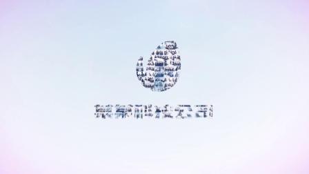 视频制作 1297 照片墙视频墙拼图图片汇聚标志logo演绎片头AE模板 ae教程