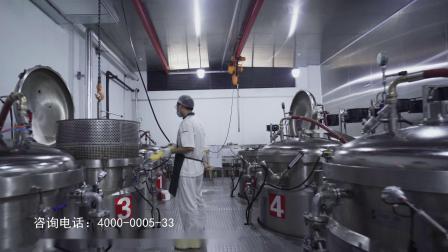 四川电视台《四川味道》栏目推荐---爱达乐粽子集合