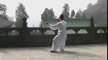 陈师宇-武当太极十三式_标清