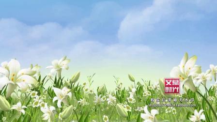 AM00836 清新百合花 梦幻清新粉色花草风景 唯美浪漫婚礼晚会 LED大屏幕背景 视频素材
