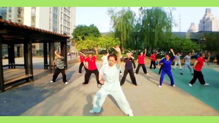 绿色家园社区老人练的传奇功法《太乙游龙拳》