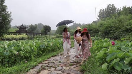 雨中赏荷2020.6.18