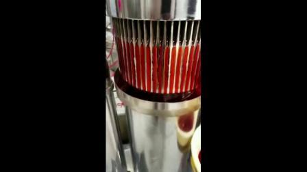 全自动液压榨油机花生菜籽芝麻榨油机商用榨油设备.mp4
