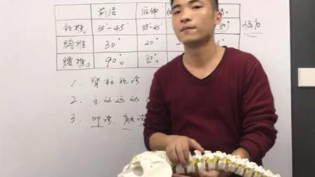 李正军正骨培训 腰椎病问答及手法操作 教学视频