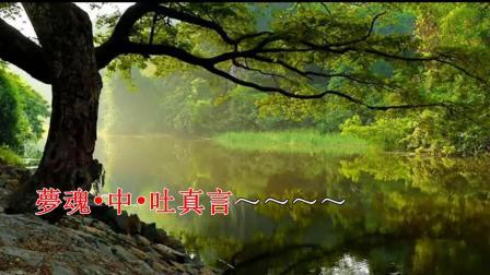 粤曲《睿王与庄妃之【凤宫情】》— 林家宝 蔡莲娣