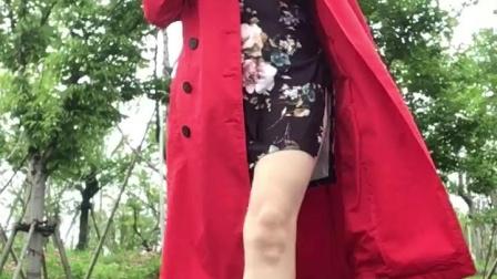千慧广场舞自由活动拍