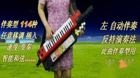 赛马-shs-500加手持自动伴奏器背挎电子琴合成器电子鼓