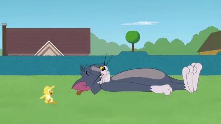 小黄鸭拥有坏运气,汤姆和斯派克跟着遭殃!