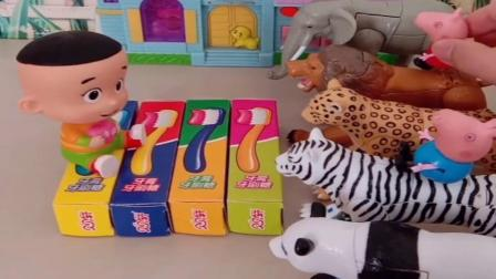 小猪佩奇玩具:乔治家里来了好躲猛兽,大头看着都害怕,其实这是乔治的变形玩具