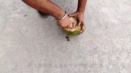 烟花燃烧时能炸开坚硬的椰子吗?老外亲测,点燃瞬间画面太硬核!