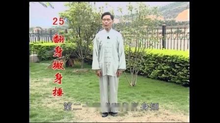 85式杨式太极拳(丁水德版)五大捶剪辑2020.6.25.mpg