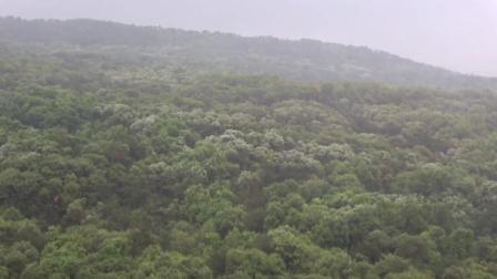 行摄南京VLOG:南京紫金山