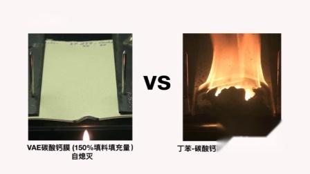 VAE共聚物乳液与丁苯胶的可燃性对比视频