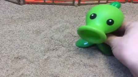 小猪佩奇玩具:贝尔把糖果都藏到豌豆射手里,来了僵尸都喷出糖果了