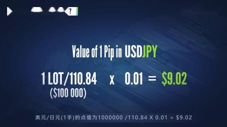 什么是点值 (Pip's Worth)?