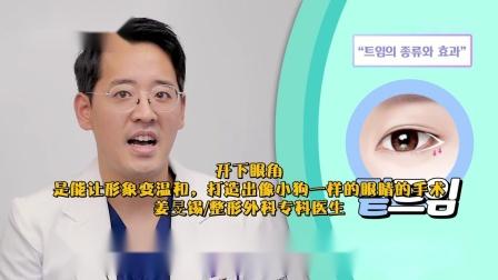 整形学概论ep08 双眼皮类型和开眼角手术失败的真正原因.