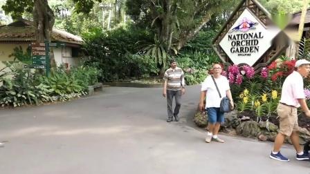 新加坡十大必去热门景点推荐!! 沒去过別说你來过新加坡~SingaporeTravel新加坡旅游攻略 新加坡经典必去景点攻略懒人包 新加坡狮城头条