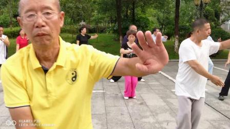 聂会长《陈式太极拳老架一路》2020年7月4日(星期六)的教学活动