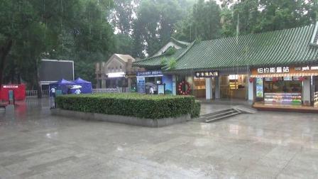 雨中的钟山风景区.mp4