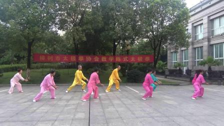 福城公园一队考核 樟树市太极拳协会聂会长《陈式太极拳老架一路》教学的第十八次活动:各队考核!2020年7月5日