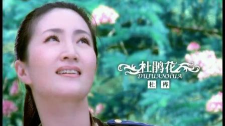 旗袍美人杜桦全国巡回演唱会宣传片