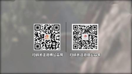 《雨中冒险2》EA测试即将结束官方确认正式版价格上涨