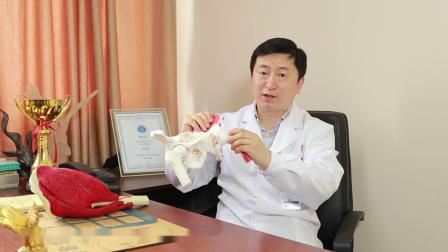 【名医讲堂】微创伤医疗健康公益视频-髋关节置换术后康复细节指导