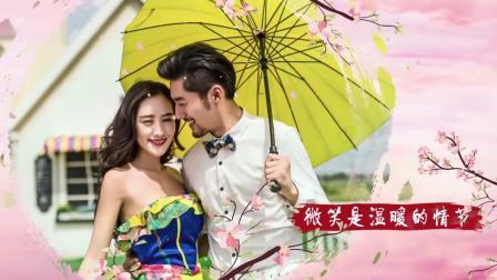 G51唯美中国风桃花花瓣飘落诗意婚礼婚庆表白节生日快乐祝福视频AE模板_x264