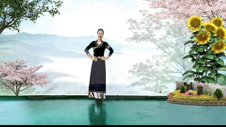咸阳九月菊《蓝色天梦》视频制作,冬青795