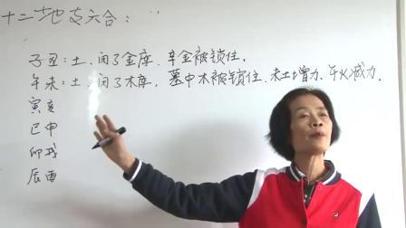 杨清娟盲派八字命理精彩片段之---地支六合