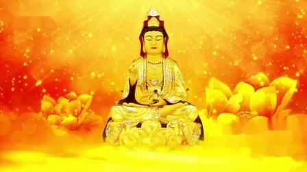 佛教歌曲《妙法莲花观世音》,净心欢喜祈福,菩萨保佑吉祥如意
