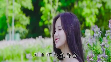 转身不必说再会(DJ何鹏版) - 杨姣