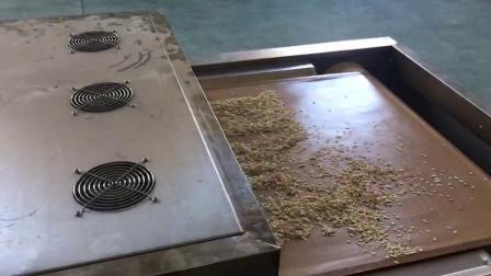 燕麦烘焙机 燕麦杀菌机 燕麦熟化设备.mp4