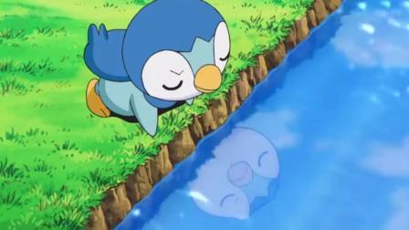 神奇宝贝:小智让圆陆鲨练习龙星群,波加曼无故躺枪,气得他直接攻击对方