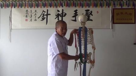 正骨培训  腰椎间盘突出手法治疗